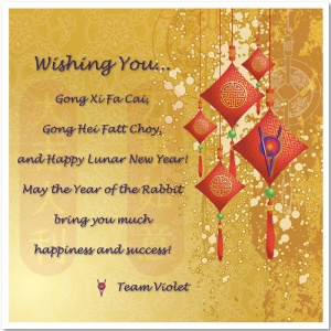 Happy Lunar New Year 2011